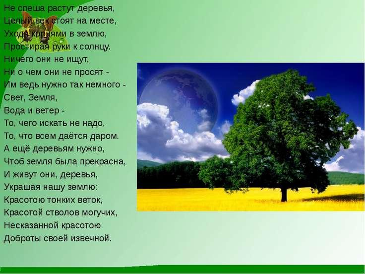 Не спеша растут деревья, Целый век стоят на месте, Уходя корнями в землю, Про...