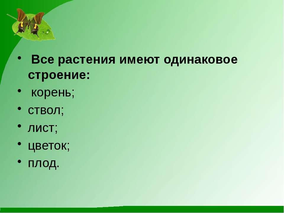 Все растения имеют одинаковое строение: корень; ствол; лист; цветок; плод.