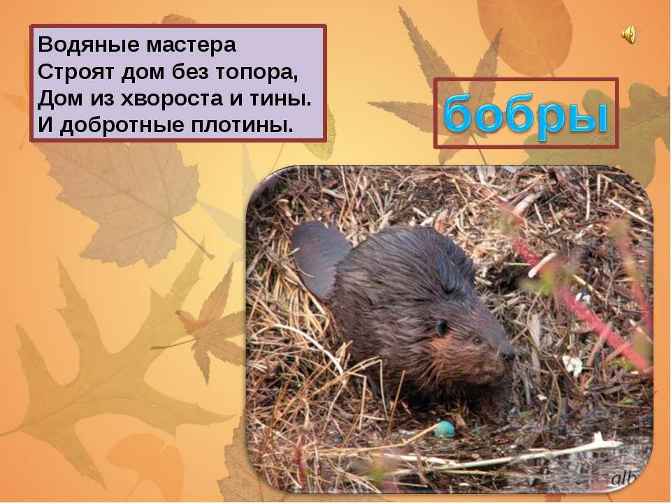 конец Сайт: viki.rdf.ru Оформление: Берюховой Е.К.