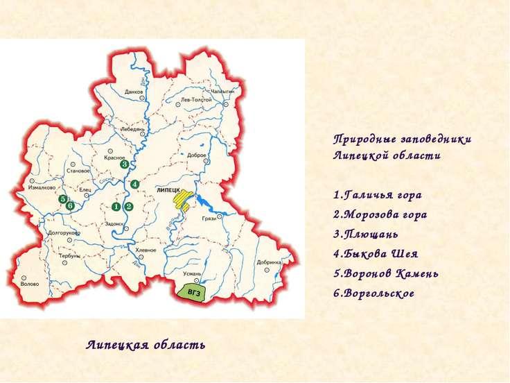 Природные заповедники Липецкой области Галичья гора Морозова гора Плющань Бык...