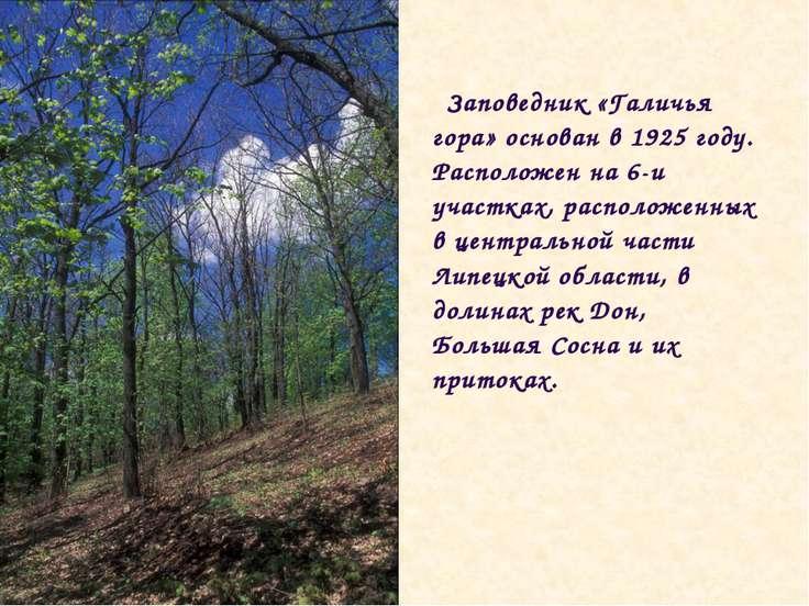 Заповедник «Галичья гора» основан в 1925 году. Расположен на 6-и участках, ра...