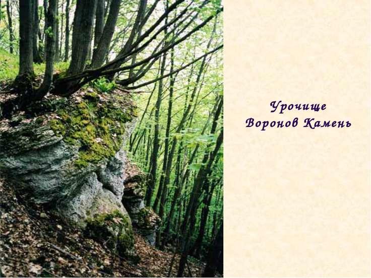 Урочище Воронов Камень