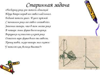 Старинная задача «На берегу реки рос тополь одинокий Вдруг ветра порыв его ст...
