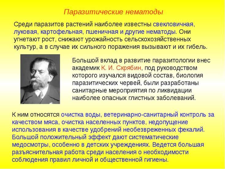 Большой вклад в развитие паразитологии внес академик К. И. Скрябин, под руков...
