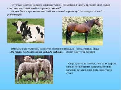 Не только работой на земле жил крестьянин. Не меньшей заботы требовал скот. К...