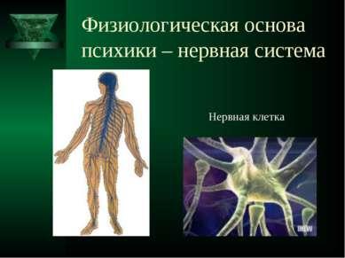 Физиологическая основа психики – нервная система Нервная клетка