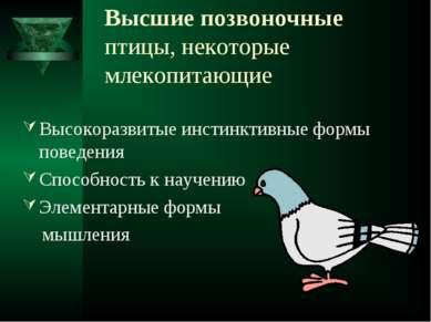 Высшие позвоночные птицы, некоторые млекопитающие Высокоразвитые инстинктивны...