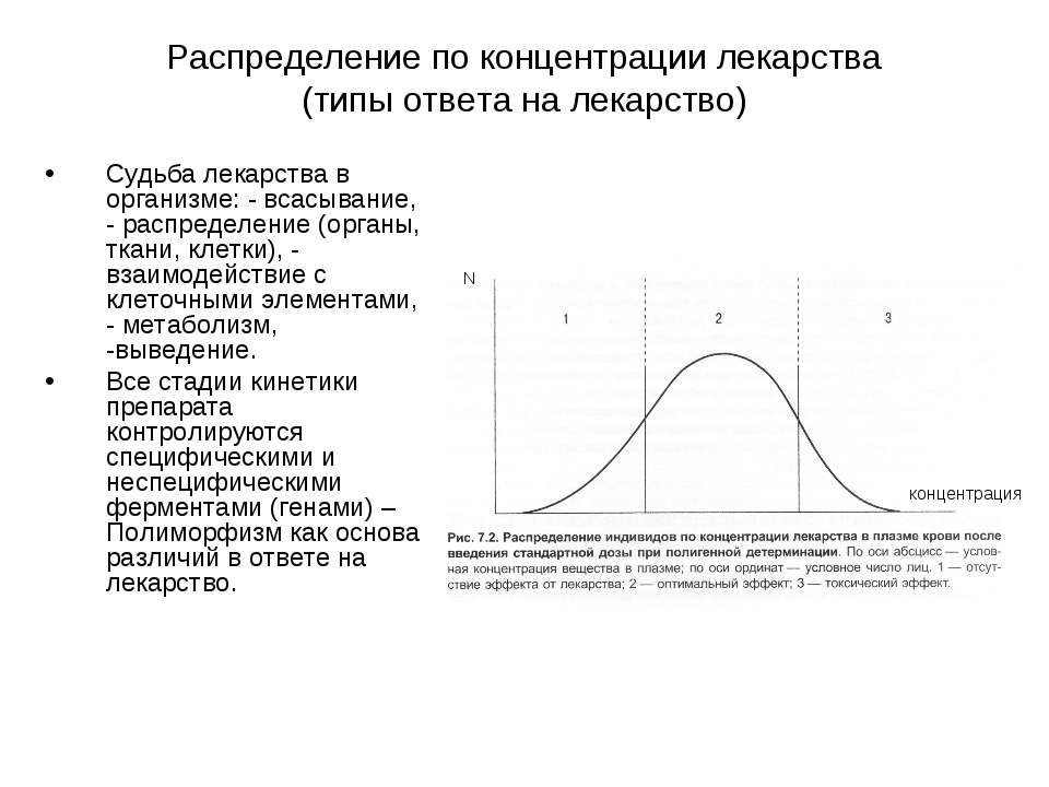 Распределение по концентрации лекарства (типы ответа на лекарство) Судьба лек...