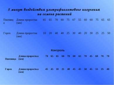 5 минут воздействия ультрафиолетового излучения на семена растений Контроль П...
