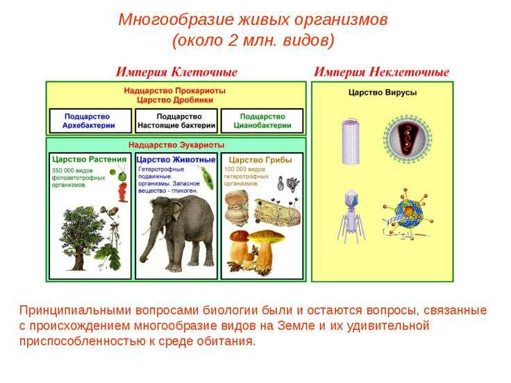Многообразие живых организмов (около 2 млн. видов) Принципиальными вопросами ...