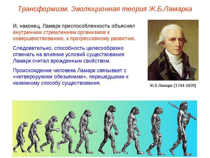Трансформизм. Эволюционная теория Ж.Б.Ламарка И, наконец, Ламарк приспособлен...