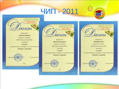 ЧИП - 2011