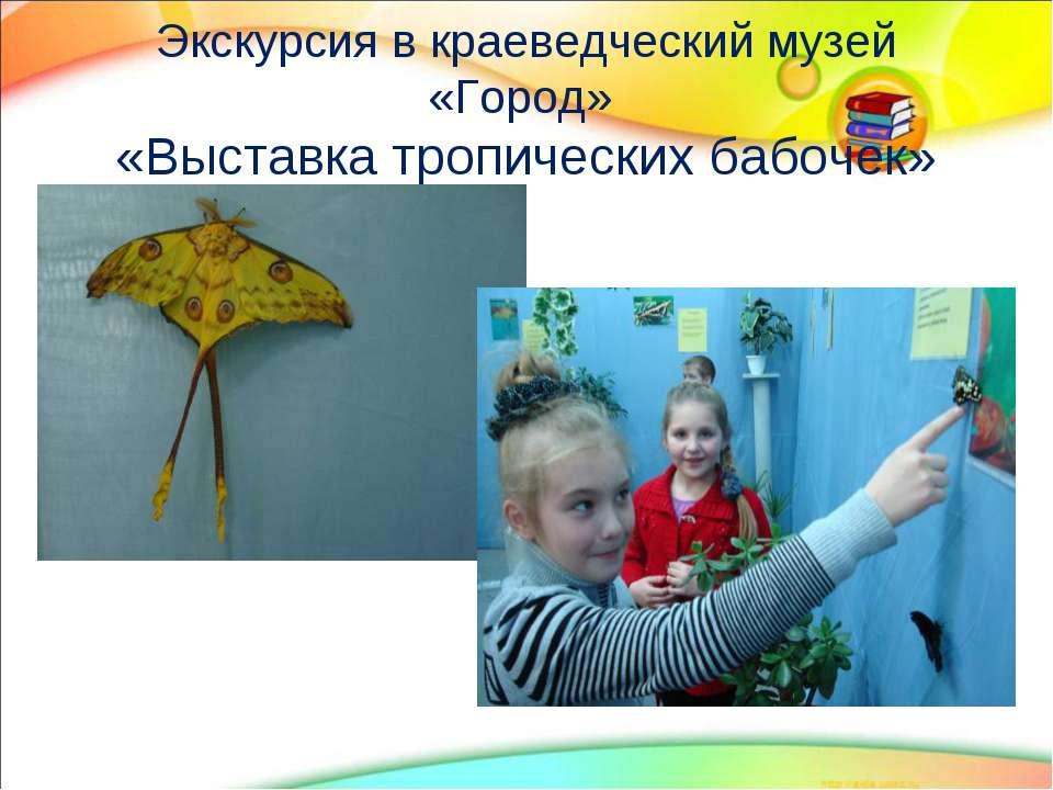 Экскурсия в краеведческий музей «Город» «Выставка тропических бабочек»