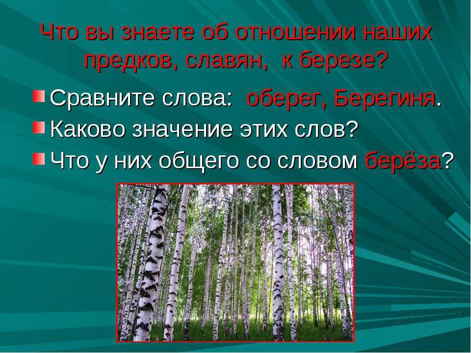 Что вы знаете об отношении наших предков, славян, к березе? Сравните слова: о...