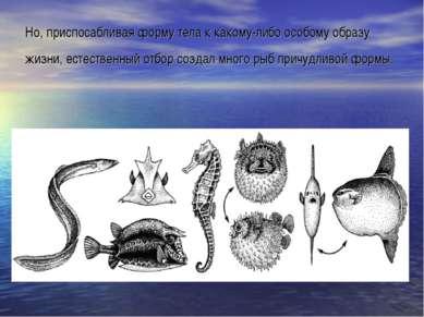 Но, приспосабливая форму тела к какому-либо особому образу жизни, естественны...