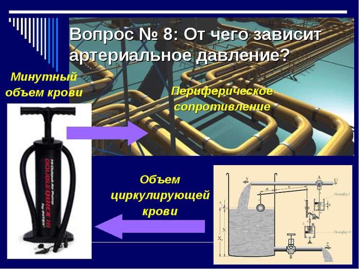 Вопрос № 8: От чего зависит артериальное давление? Минутный объем крови Периф...