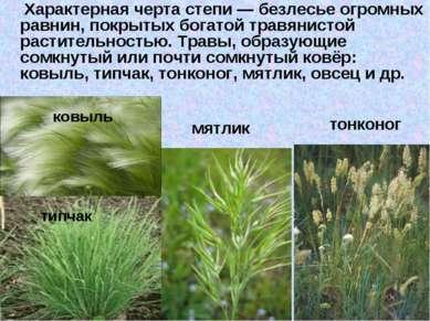 Характерная черта степи— безлесье огромных равнин, покрытых богатой травянис...