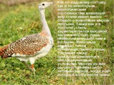 Как по видовому составу, так и по некоторым экологическим особенностям животн...