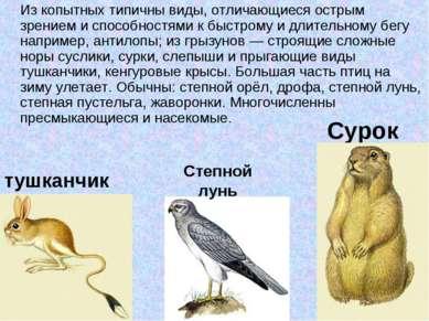 Сурок Из копытных типичны виды, отличающиеся острым зрением и способностями к...