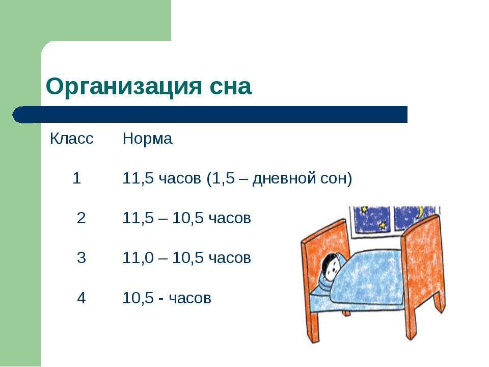 Организация сна