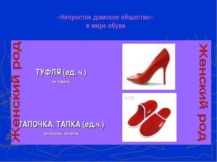 «Непростое дамское общество» в мире обуви