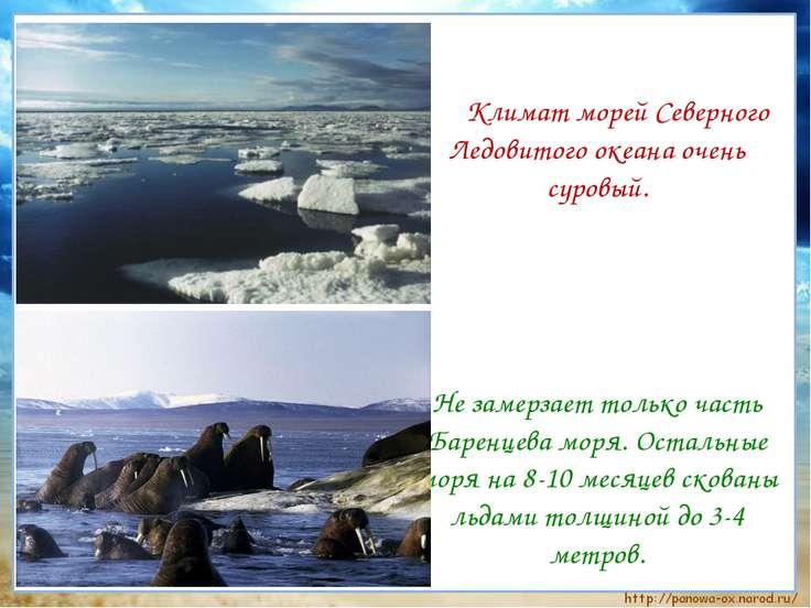 Климат морей Северного Ледовитого океана очень суровый. Не замерзает только ч...