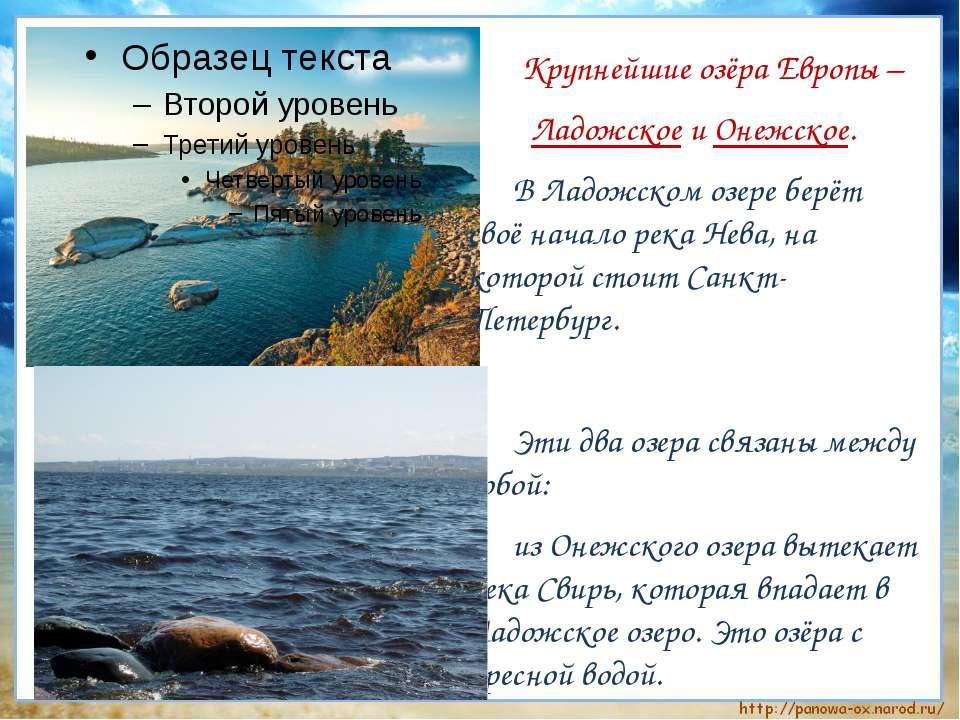 Крупнейшие озёра Европы – Ладожское и Онежское. В Ладожском озере берёт своё ...