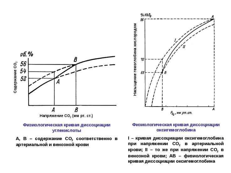Напряжение СО2 (мм рт. ст.) Содержание СО2 Насыщение гемоглобина кислородом Ф...