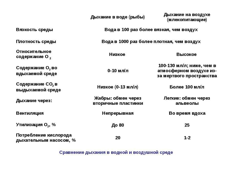 Сравнение дыхания в водной и воздушной среде Дыхание в воде (рыбы) Дыхание на...