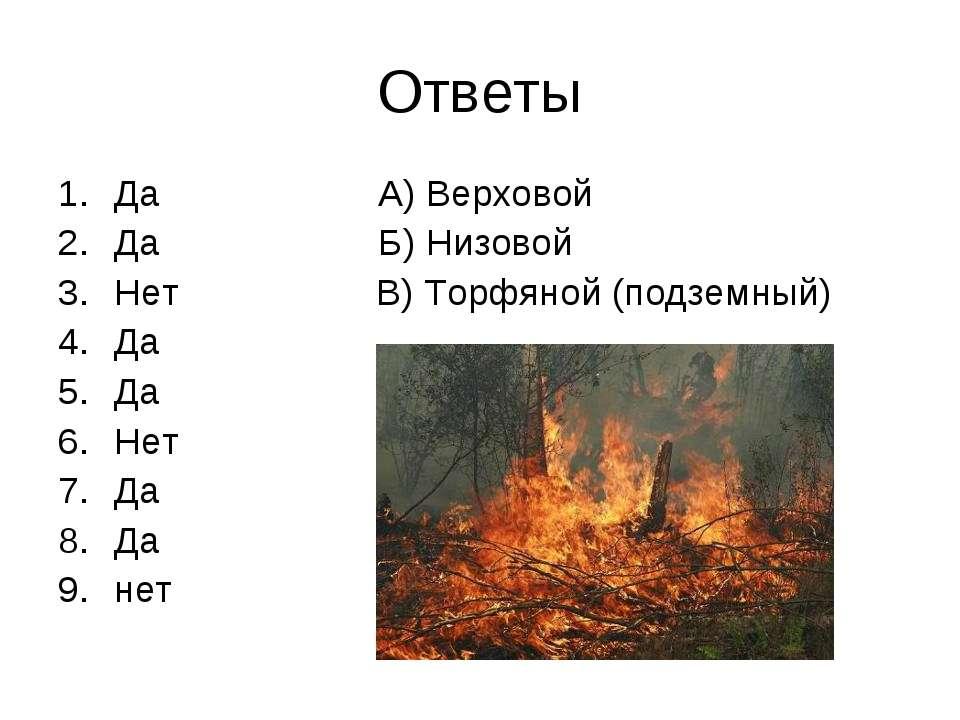 Ответы Да А) Верховой Да Б) Низовой Нет В) Торфяной (подземный) Да Да Нет Да ...