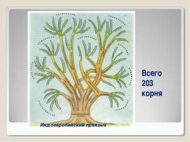 Всего 203 корня Индоевропейский праязык
