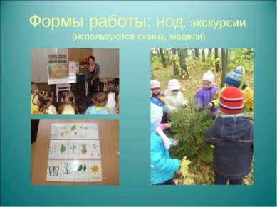 Формы работы: НОД, экскурсии (используются схемы, модели)