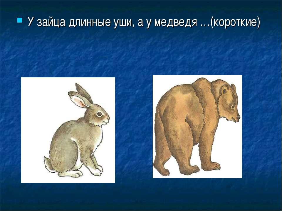 У зайца длинные уши, а у медведя …(короткие)