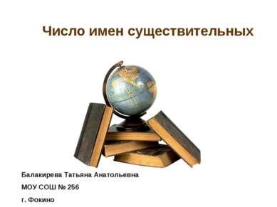 Число имен существительных Балакирева Татьяна Анатольевна МОУ СОШ № 256 г. Фо...