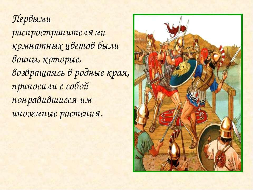 Первыми распространителями комнатных цветов были воины, которые, возвращаясь ...