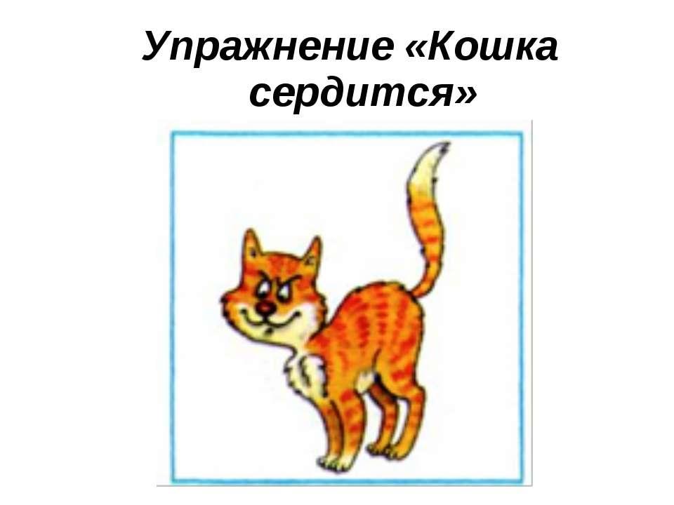 Упражнение «Кошка сердится»