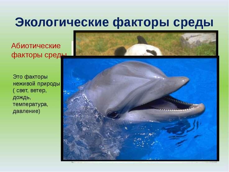 Экологические факторы среды Абиотические факторы среды Это факторы неживой пр...