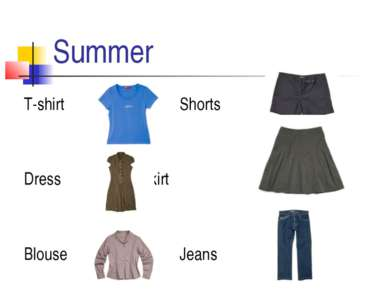 Summer T-shirt Shorts Dress Skirt Blouse Jeans