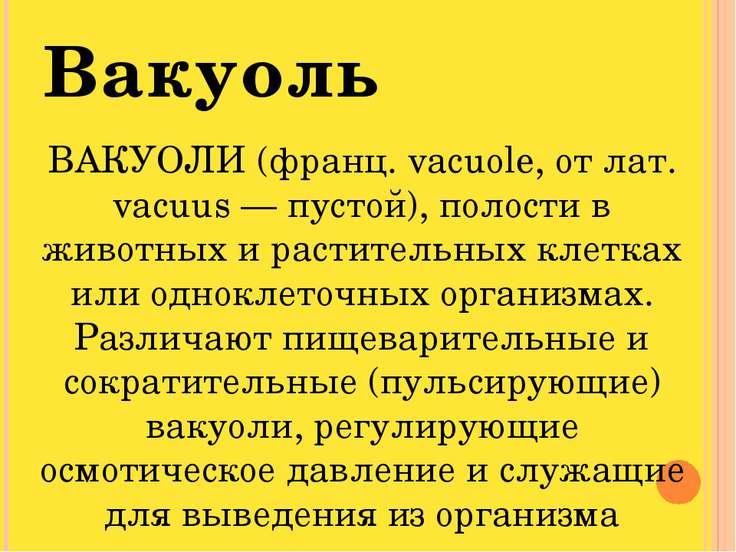 Вакуоль ВАКУОЛИ (франц. vacuole, от лат. vacuus — пустой), полости в животных...