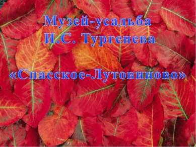 Музей-заповедник И.С. Тургенева Спасское-Лутовиново