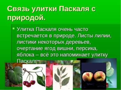 Связь улитки Паскаля с природой. Улитка Паскаля очень часто встречается в при...