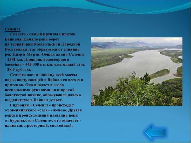 Селенга Селенга - самый крупный приток Байкала. Начало река берет натер...