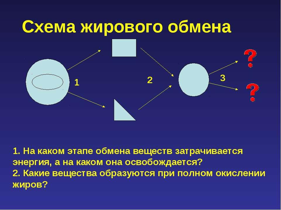 Схема жирового обмена 1. На каком этапе обмена веществ затрачивается энергия,...