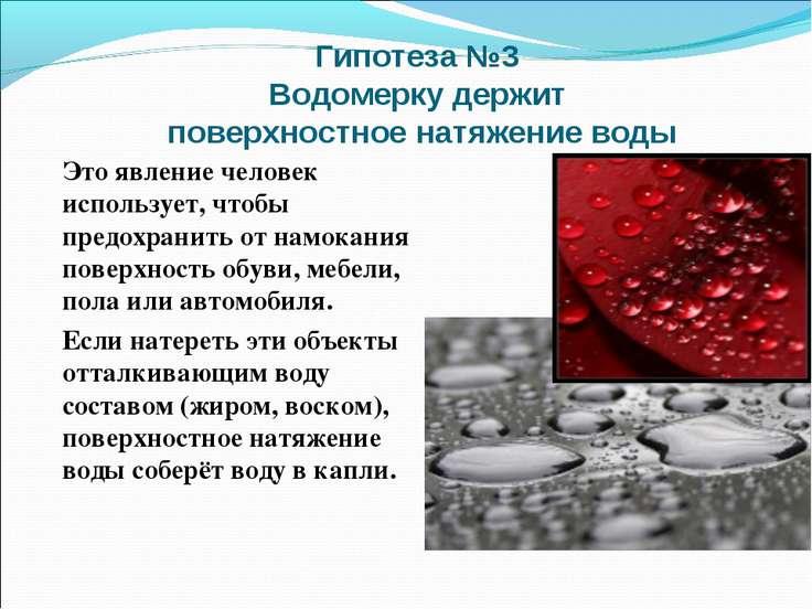 Гипотеза №3 Водомерку держит поверхностное натяжение воды Это явление человек...