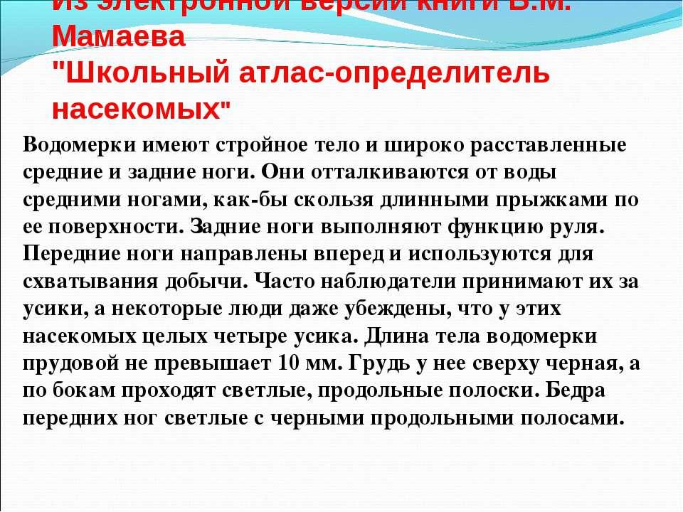 """Из электронной версии книги Б.М. Мамаева """"Школьный атлас-определитель насеком..."""