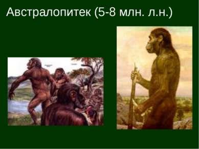 Австралопитек (5-8 млн. л.н.)