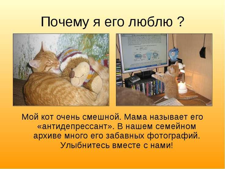 Почему я его люблю ? Мой кот очень смешной. Мама называет его «антидепрессант...