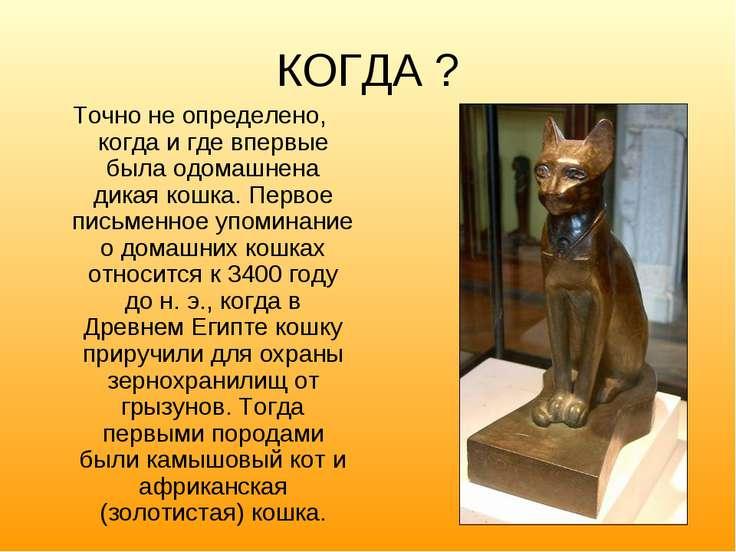 КОГДА ? Точно не определено, когда и где впервые была одомашнена дикая кошка....