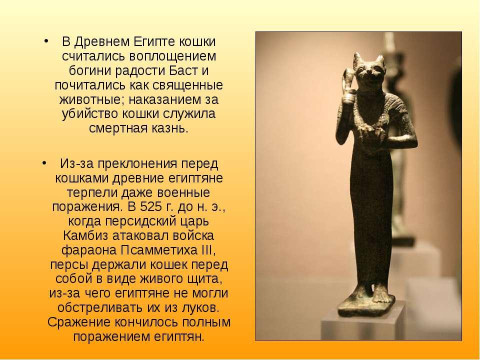 В Древнем Египте кошки считались воплощением богини радости Баст и почитались...