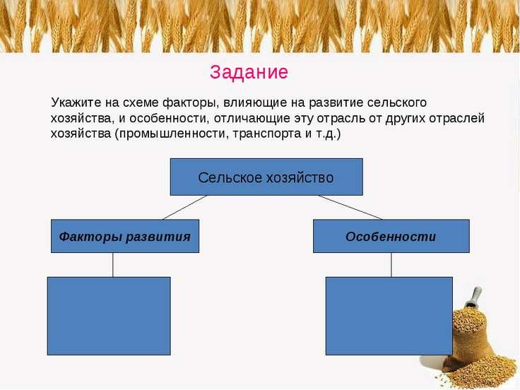 Задание Укажите на схеме факторы, влияющие на развитие сельского хозяйства, и...